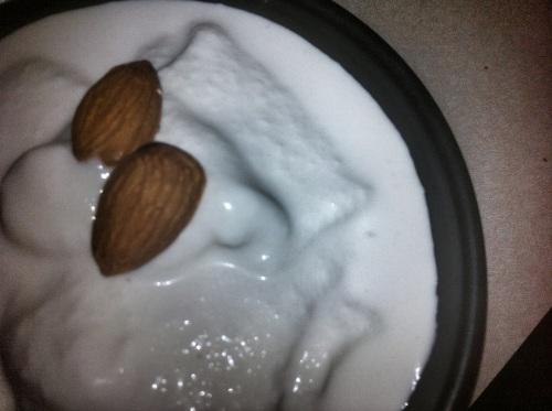 Almond Studded Vegan Vanilla Vodka Ice Cream
