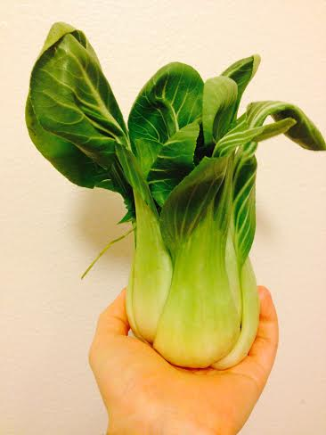 Unusual Juiceables- Bok Choy